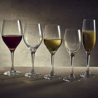 Vicrila Iridion Wine Glasses with wine