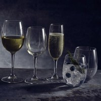 Vicrila Syrah Wine Glasses and Tumblers with drinks
