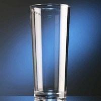 Elite POLYCARBONATE Nucleated Beer Glass 56cl / Pint